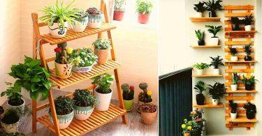 Plante d'intérieur (verte) pour la maison