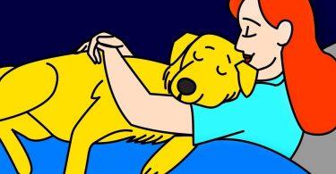 les 12 comportements avec lesquels votre chien vous dit : « je t'aime »